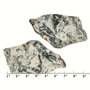 Slab1689 - Tree Agate slabs