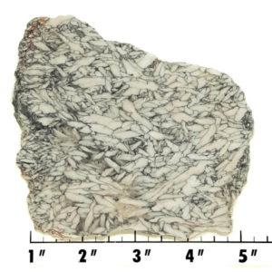 Slab1225 - Pinolith Slab