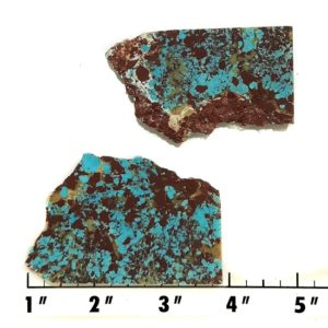 Slab1275 - Red Skin Turquoise Slabs