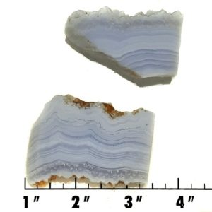 Slab1635 - Blue Lace Agate slabs