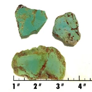Slab1684 - Stabilized Turquoise Slabs