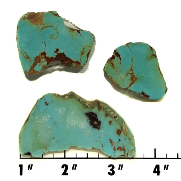 Slab1692 - Stabilized Turquoise Slabs