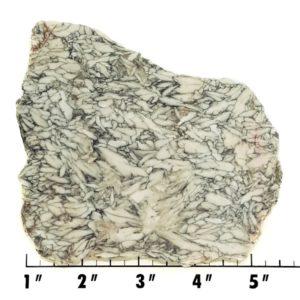Slab561 - Pinolith Slab