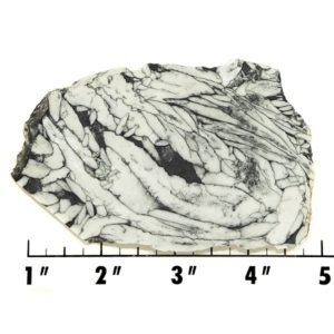 Slab634 - Pinolith Slab