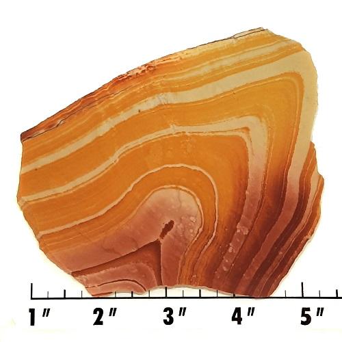 Slab645 - Wonderstone Rhyolite Slab