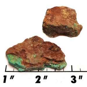 Battle Mountain Turquoise Rough #17