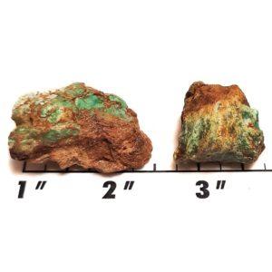 Battle Mountain Turquoise Rough #23