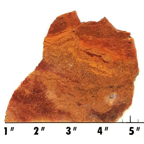 Slab1085 - Bloody Basin Agate Slab
