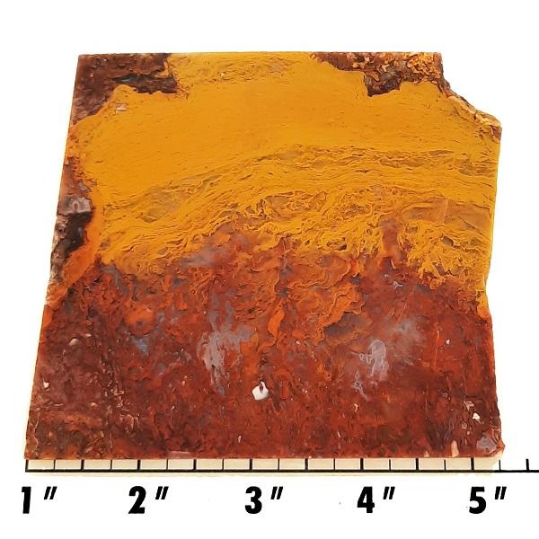 Slab1315 - Rooster Tail Agate slab