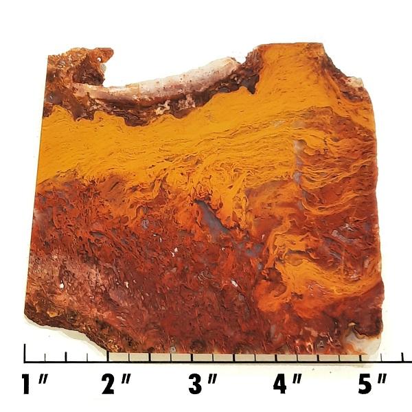 Slab1333 - Rooster Tail Agate slab