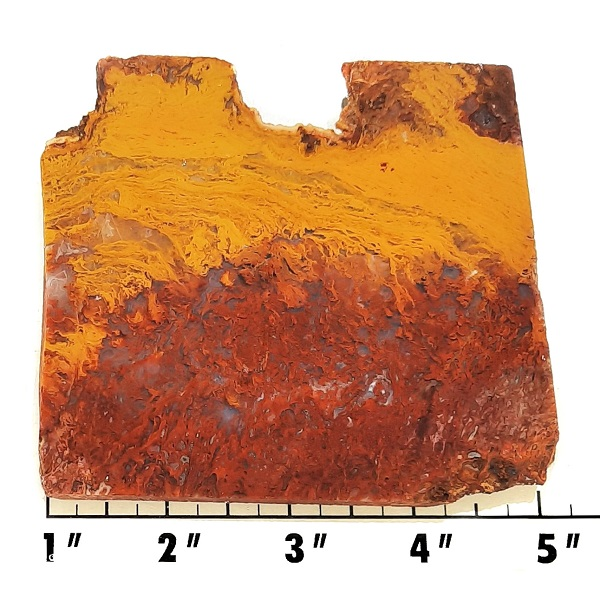 Slab1357 - Rooster Tail Agate slab