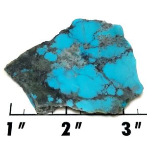 Slab113 - Stabilized Kingman Turquoise Slab