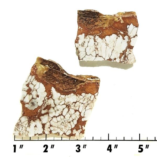 Slab2137 - Wild Horse Magnesite Slabs
