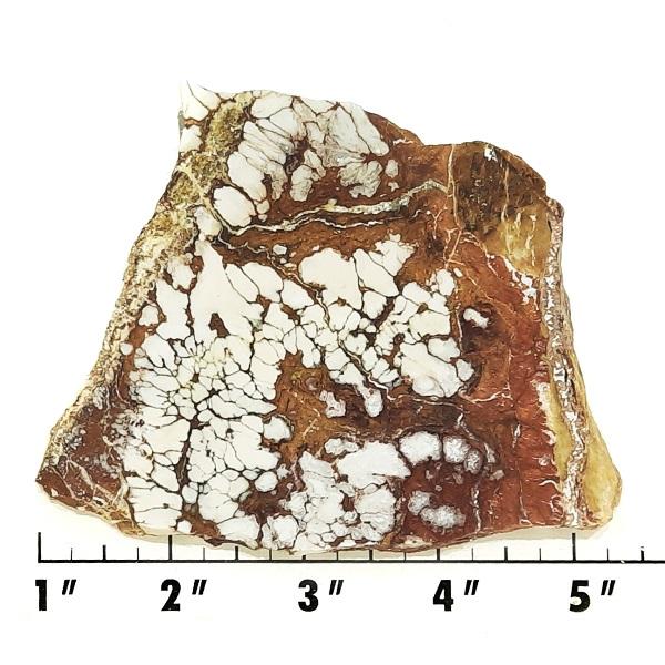 Slab2079 - Wild Horse Magnesite Slab