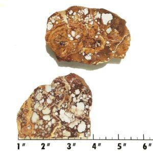 Slab2118 - Wild Horse Magnesite Slabs