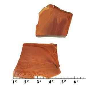 Slab1029 - Owyhee Jasper slabs