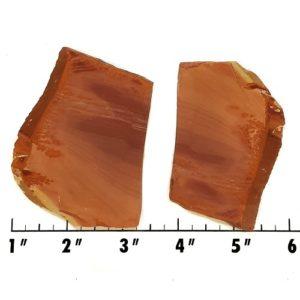 Slab1032 - Owyhee Jasper slabs