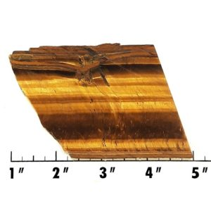 Slab1175 - Golden Tiger Eye Slab