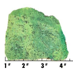 Slab1596 - Primavera Chrysocolla Slab
