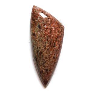 Cab2450 - Dinosaur Bone Cabochon