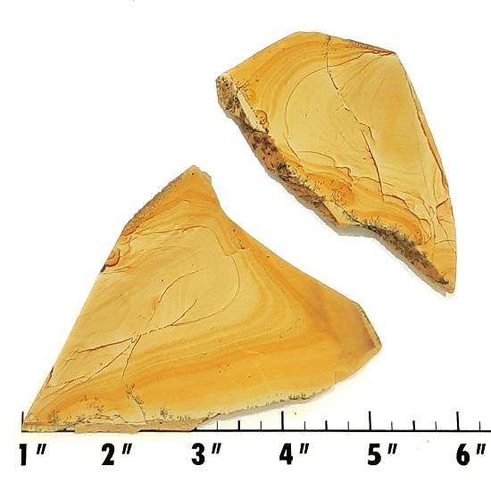 Slab259 - Owyhee Jasper slabs