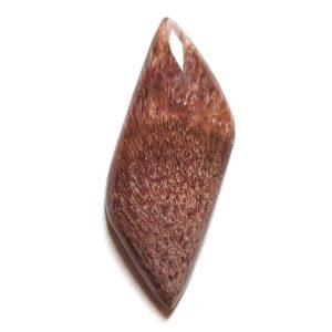 Cab457 - Palm Jasper (Fossil Fern) Cabochon