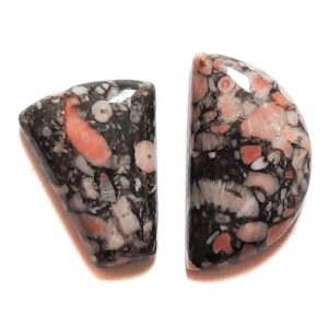 Cab615C - Crinoid Fossil Marble Cabochon Parcel