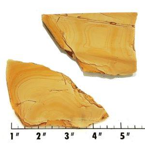 Slab834 - Owyhee Jasper slabs