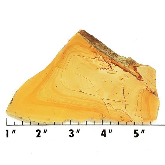 Slab841 - Owyhee Jasper slab