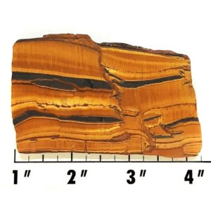 Slab1555 - Landscape Tiger Eye Slab