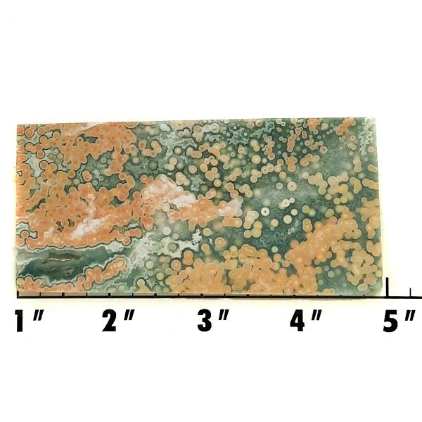 Slab1990 - Ocean Jasper Slab