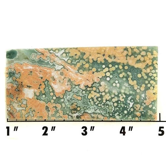 Slab1991 - Ocean Jasper Slab