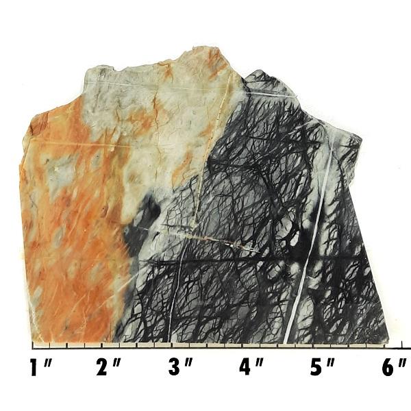 Slab1522 - Picasso Marble slab
