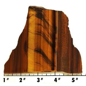 Slab240 - Golden Tiger Eye Slab
