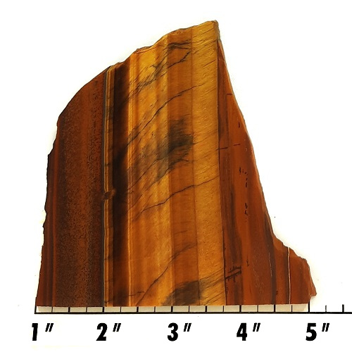 Slab247 - Golden Tiger Eye Slab