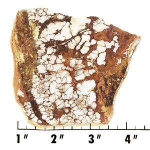 Slab2069 - Wild Horse Magnesite Slab