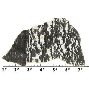 Slab170 - Zebra Jasper Slab