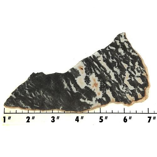 Slab1717 - Zebra Jasper Slab