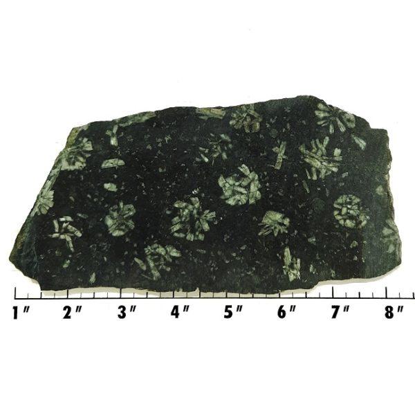 Slab465 - Flowerstone Slab