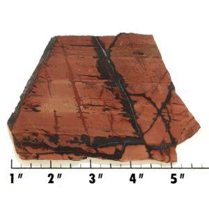 Slab405 - Indian Paint Rock Slab
