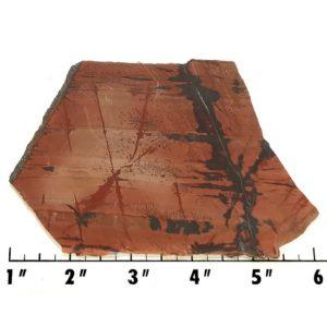 Slab409 - Indian Paint Rock Slab