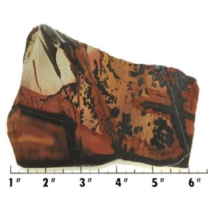 Slab415 - Indian Paint Rock Slab