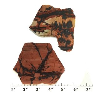 Slab388 - Indian Paint Rock Slabs