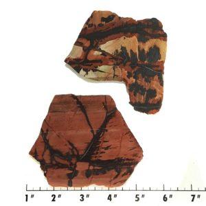 Slab388 - Indian Paint Rock Slabs