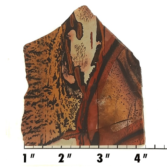 Slab392 - Indian Paint Rock Slabs