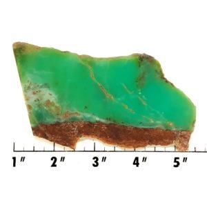 Slab419 - Chrysoprase Slab