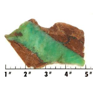 Slab417 - Chrysoprase Slab