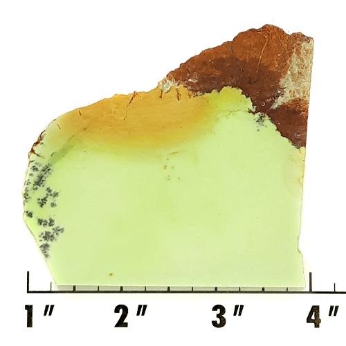 Slab432 - Lemon Chrysoprase Slab