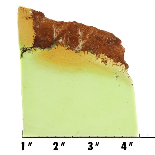 Slab437 - Lemon Chrysoprase Slab