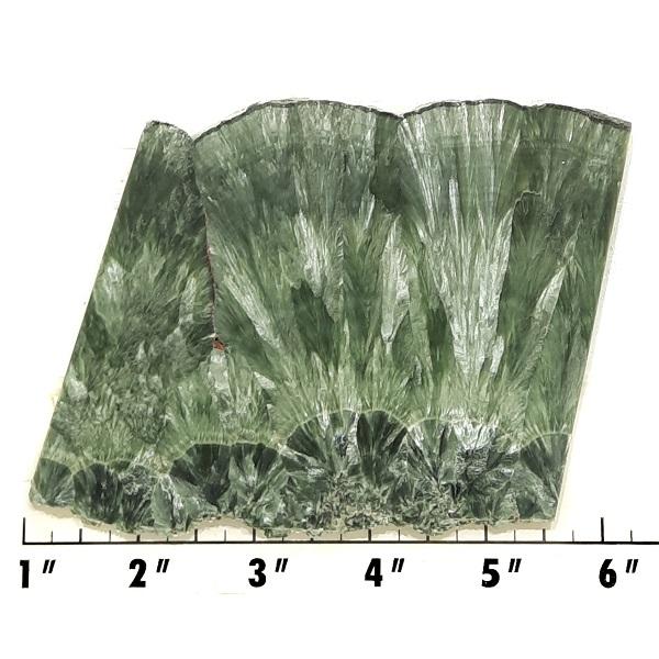 Slab481 - Seraphinite Slab